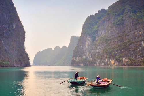 Image Halong Cruise 2 Days 1 Night